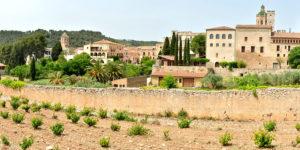 Poblet and Santes Creus Monasteries Day Trip
