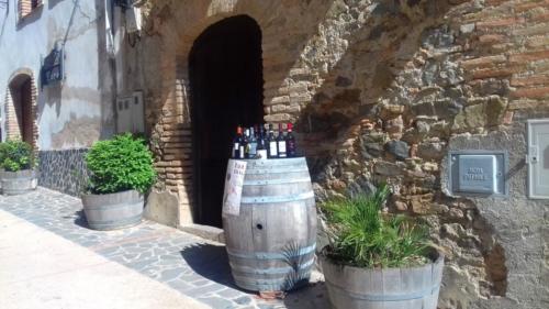 Priorat Wine Tour
